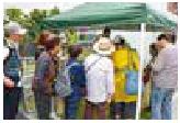 マーケットの開催イメージ