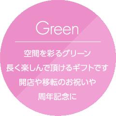 Green 空間を彩るグリーン。長く楽しんでいただけるギフトです。開店や移転のお祝いや周年記念に