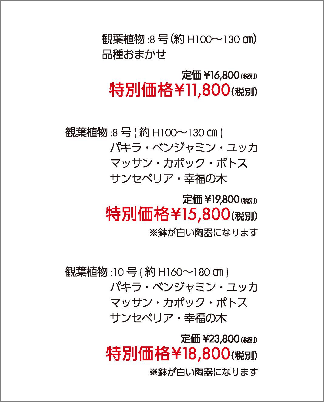 特別価格11,800~18,000円